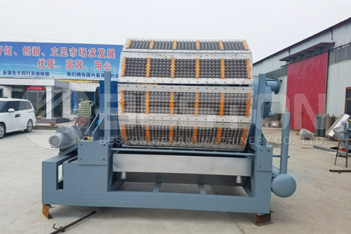 BTF-5-12 Egg Carton Forming Machine